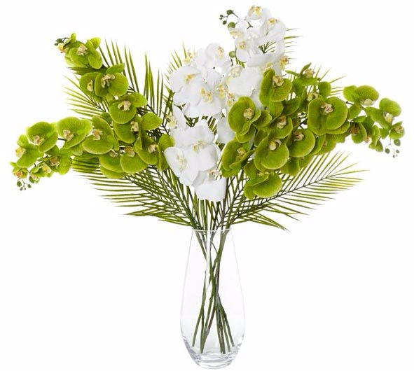 Flower Arrangement With Orchids. Orchid Simplicity Floral