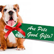 Are Pets Good Gifts? Gifting Pets During The Holidays - Bombs Away!