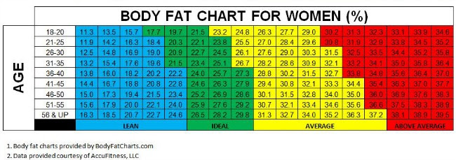 does bmi give body fat percentage