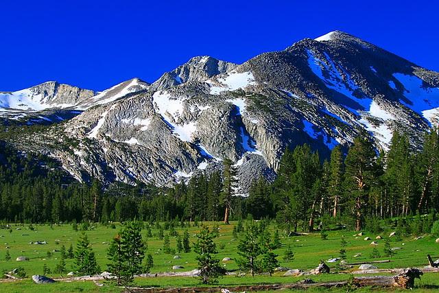 IMG_4104 Dana Meadows and Mammoth Peak, Yosemite National Park