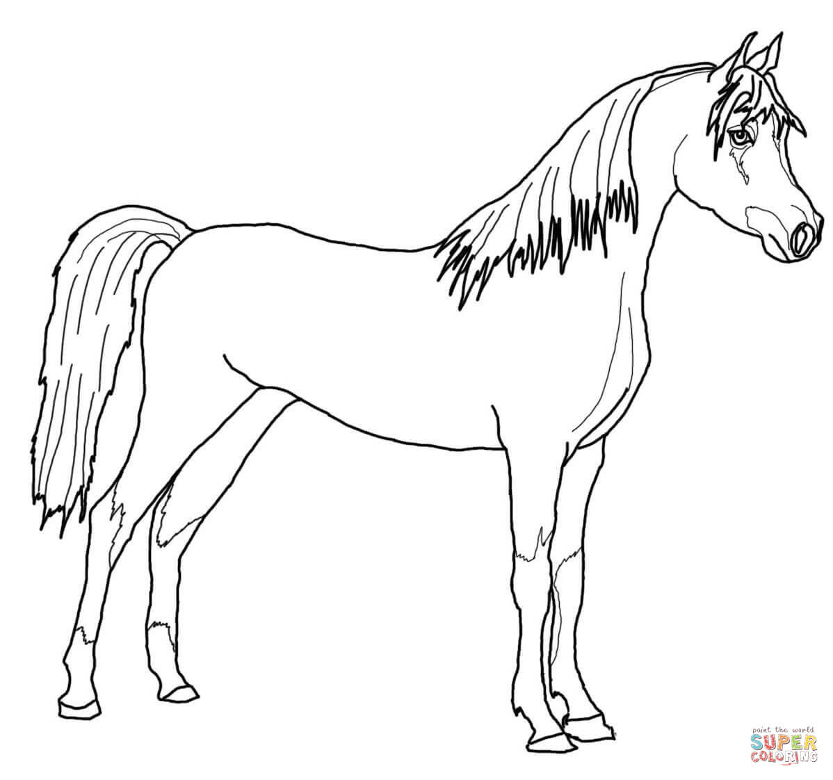 Clydesdale Horse Coloring Pages at GetColorings.com | Free ...