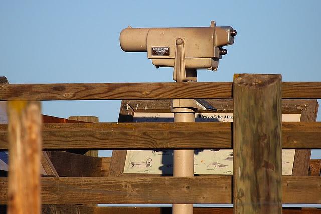 IMG_9967 Observation Tower, San Luis National Wildlife Refuge