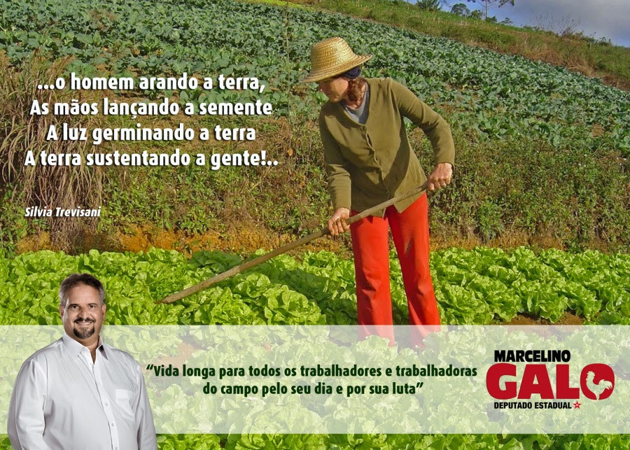 Dia do Agricultor - Marcelino Galo -
