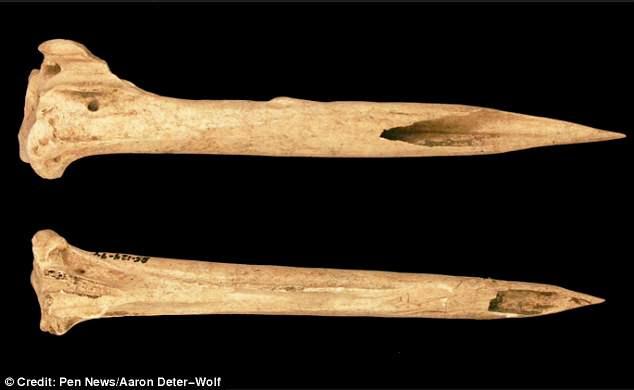 Detalle de dos de las agujas de hueso identificadas. Foto: Aaron Deter-Wolf.