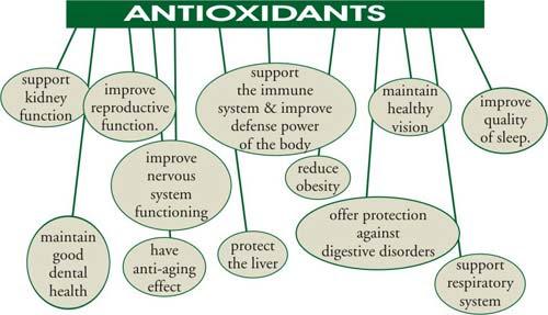 http://www.antioxidants-make-you-healthy.com/images/aobenefits.jpg