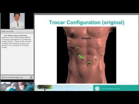 SAGES Webinar - PART 2: Endoscopic Administration of Postbariatric Surgical procedure Sufferers