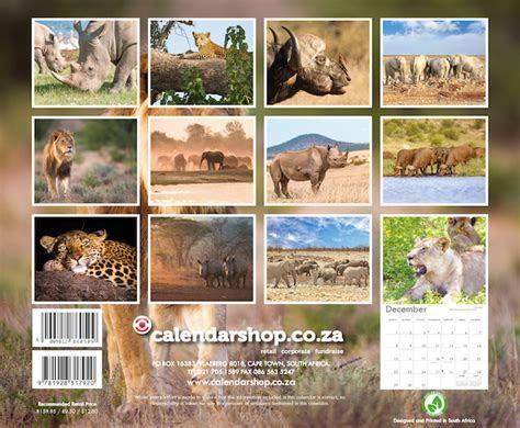 African Wildlife Big5 A4 Wall Calendar 2019   Calendar Shop