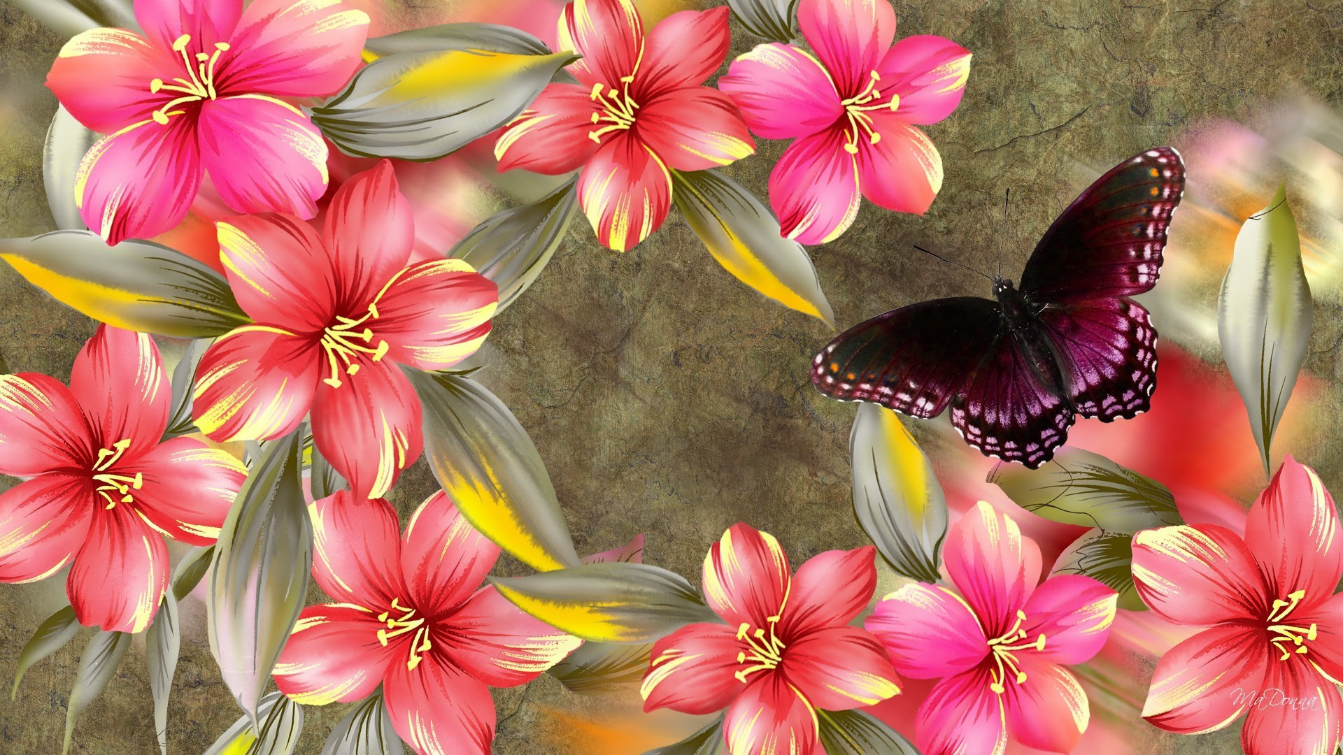 Butterfly Computer Wallpapers (59+ background pictures)