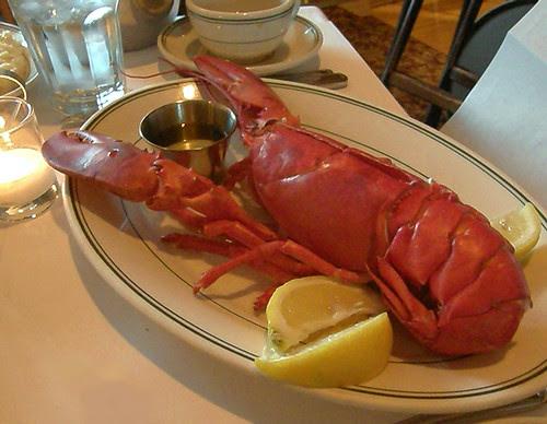 wife loves lobster