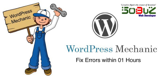 I will install wordpress configure and fix wordpress issue and wordpress bug