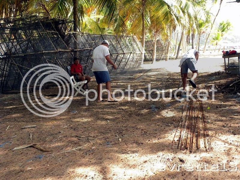 http://i1252.photobucket.com/albums/hh578/chevrette13/Guadeloupe/DSCN7921Copier_zps27e09a8d.jpg