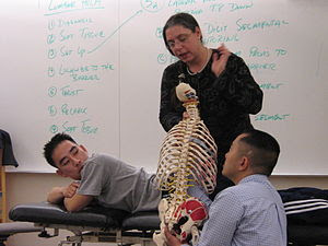 A physician professor and med students learn a...
