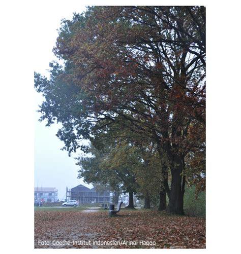 bildergalerie musim gugur langkah menuju jerman