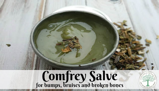 How to Make Comfrey Salve For Bumps, Bruises, Broken Bones
