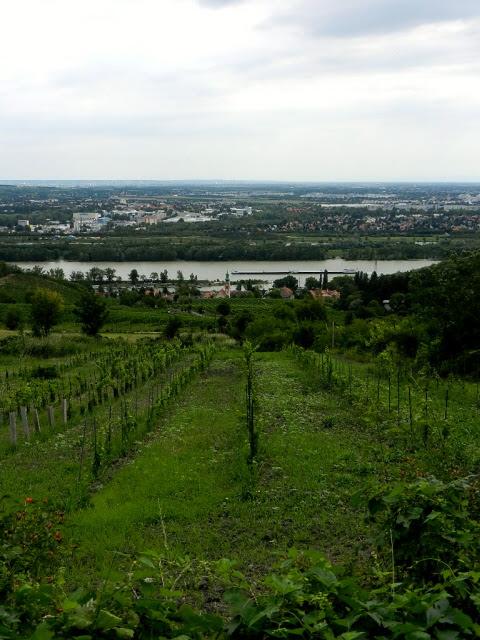 Kahlenbergerdorf_2012_13