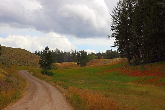 IMG_4790 Blacktail Plateau Drive