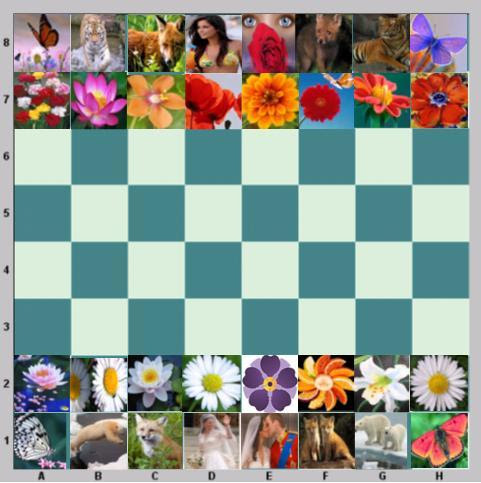 Chess Beauty - The Beauty of the Chess Game