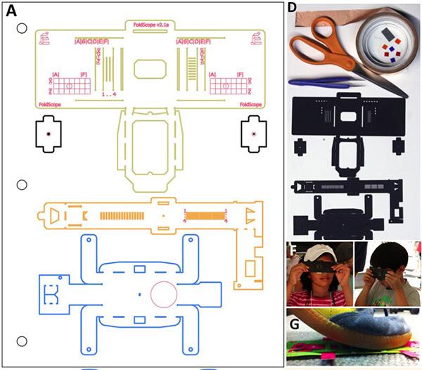Foldscope: El microscópio de papel recortable