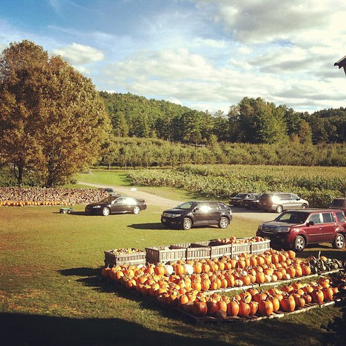 Oh you know, just a typical ridiculously adorable farm in New England. NDB.