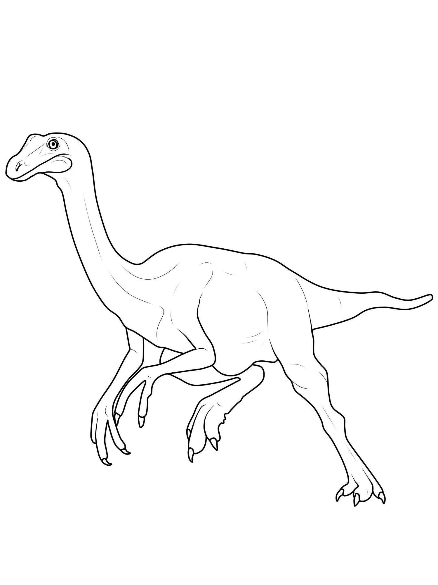 Ausmalbild Dinosaurier und Steinzeit Dinosaurier Gallimimus kostenlos ausdrucken