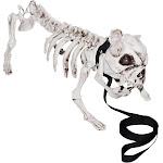 Skeleton Dog Decoration Prop - 41004 - Black/White - One Size