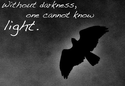Quotes About Light Dark 356 Quotes