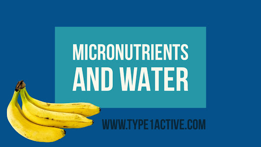 Micronutrients and Water - Type 1 Active