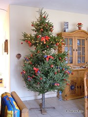 Weihnachtsbaum 005