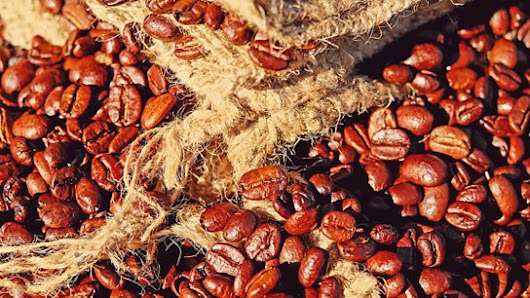The Muhammadan Bean: The Secret History of Islam and Coffee