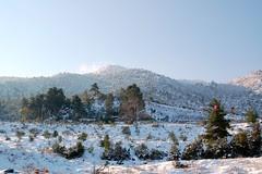 Snow in Greece, Jan 2006