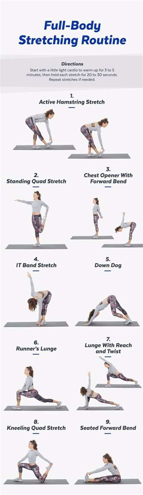 stretching routines  rehabilitate  body ideal