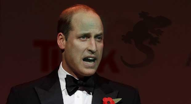 prince william says royal family is being damaged by humans having too much power on social media