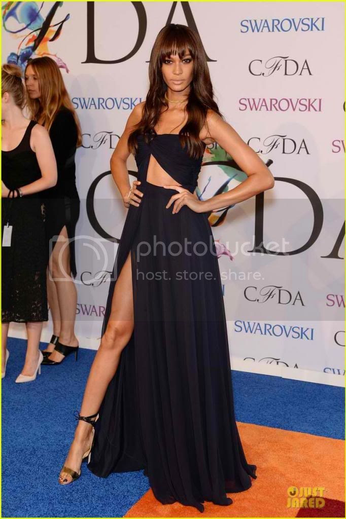 2014 CFDA Awards Red Carpet Fashion Styles Joan Smalls photo joan-smalls-cfda-awars-2014_zps95139493.jpg