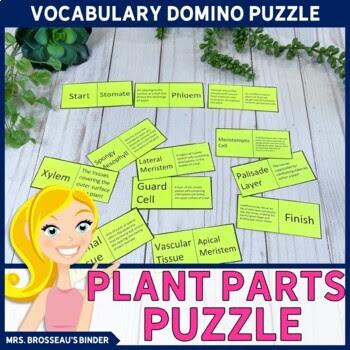 Plant Parts Domino Puzzle - Biology Puzzle