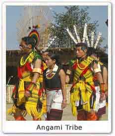 angami-tribe