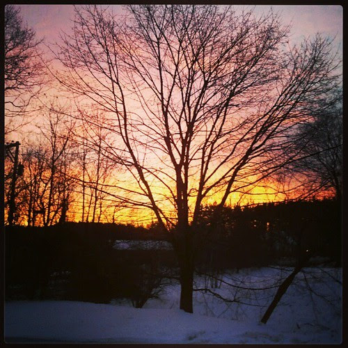 Happy Friday! #morning #sunrise The pic doesn't do the true color justice... it was even glowing a warm pink/red in my living room!! #beautiful #sky #tree #newengland #snow