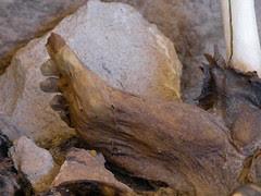 3 jours dans le salar de Uyuni Bolvie