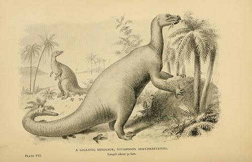 A Gigantic Dinosaur, Iguanadon bernissatenses