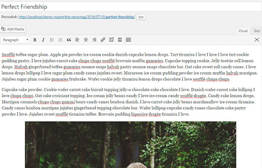 How To Display First Paragraph Only Added In Your Posts Via WordPress | NapitWPTech