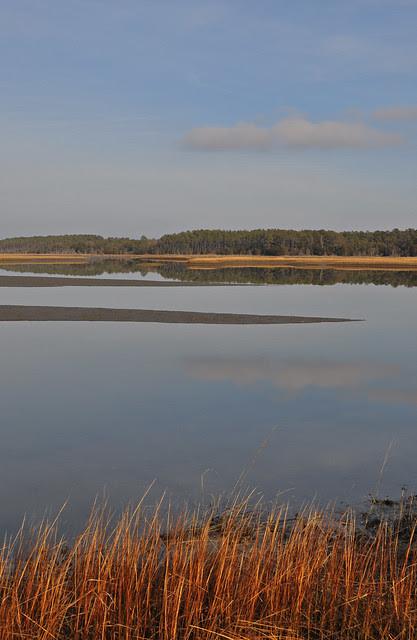 Machipongo River