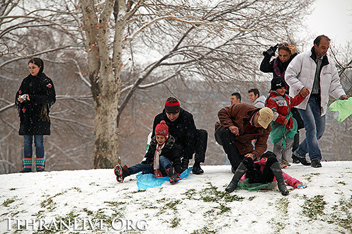 Winter Playing in Tehran