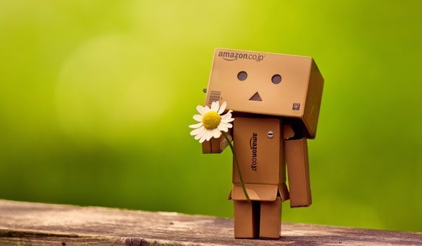 Cute Danbo The Japanese Robot Pictures Mameara