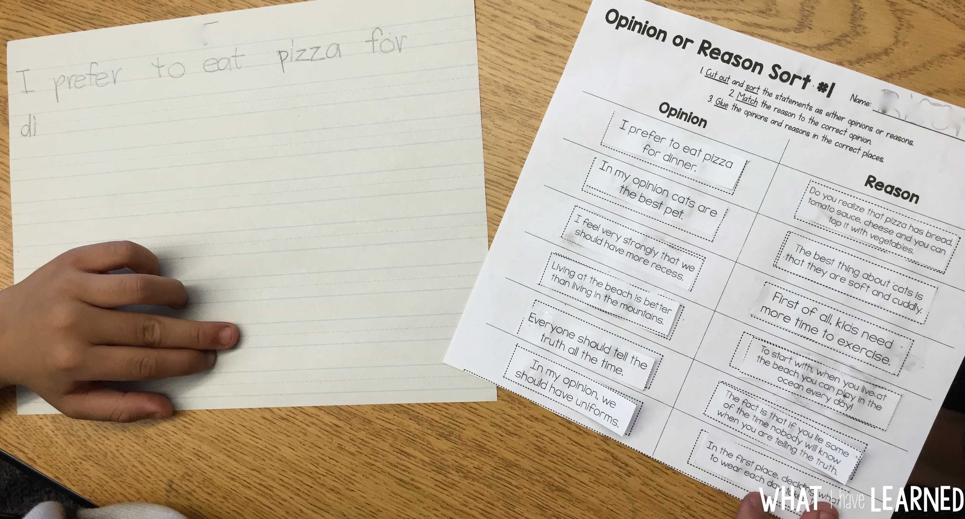 how do you write an opinion essay