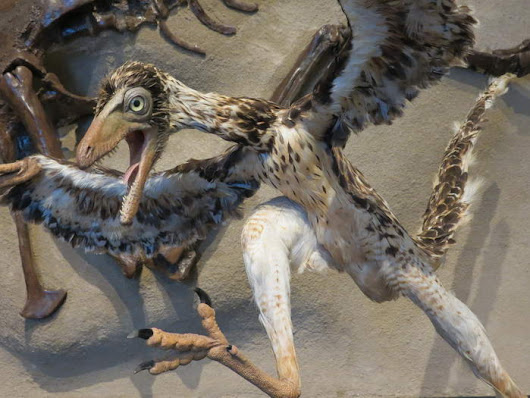 10 Most Crazy Ancient Creatures That Really Existed