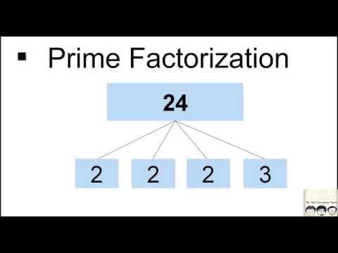 C Practical and Assignment Programs - Prime Factorization