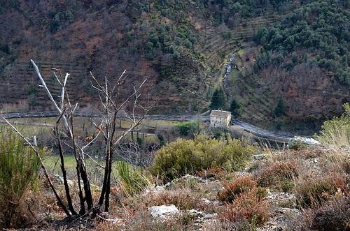 Houses of the Cévennes