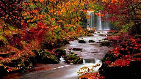 autumn wallpapers hd wallpaper cave