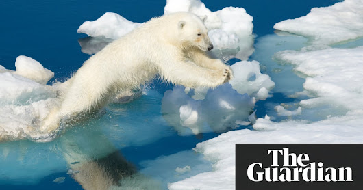Arctic warming: scientists alarmed by 'crazy' temperature rises | Environment | The Guardian