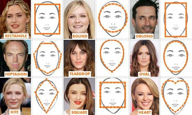 average body fat percentage for female models