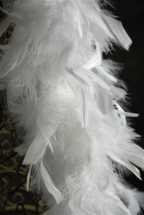 White Boa 72in